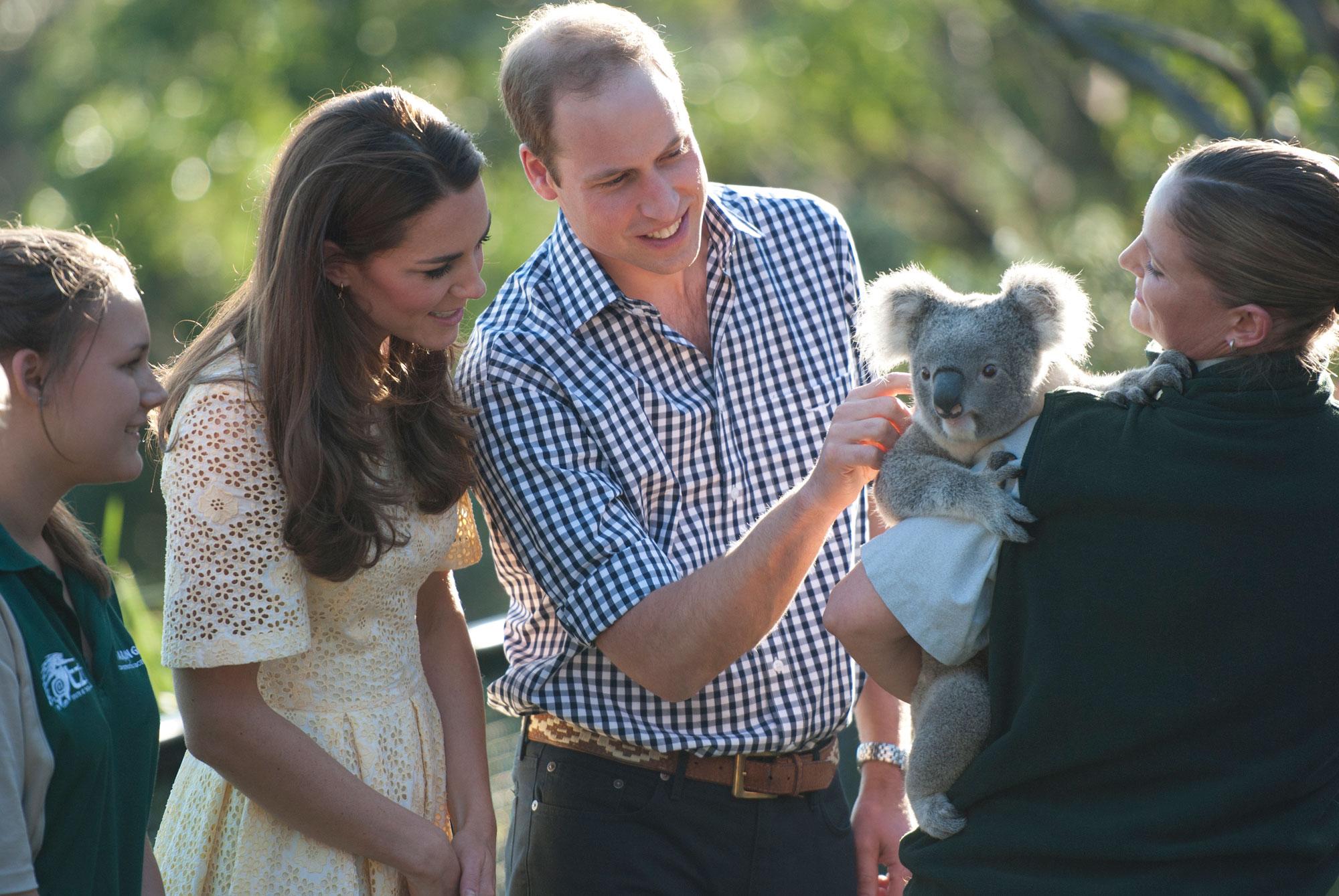 William and Kate pat a koala named Leuca held by Lucinda Cveticanin